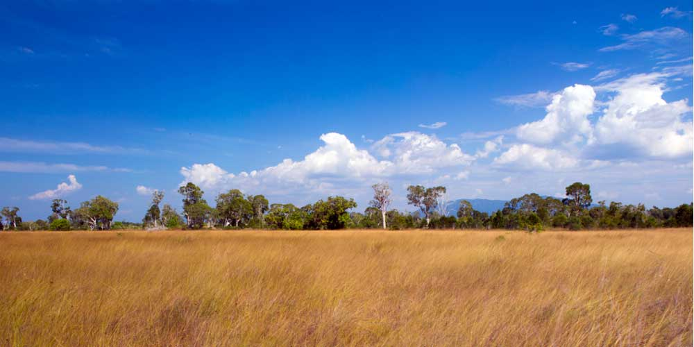 Prathong panorama