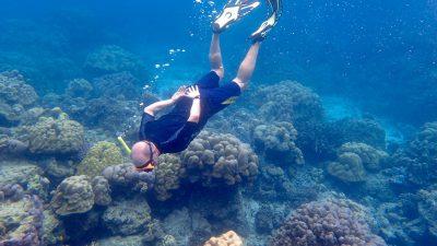 snorkeling at surin