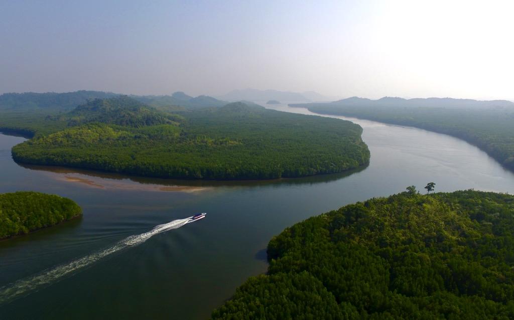 Speedboat in Mangroves